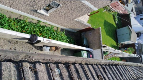 Roof Repointing Castleknock Dublin 15